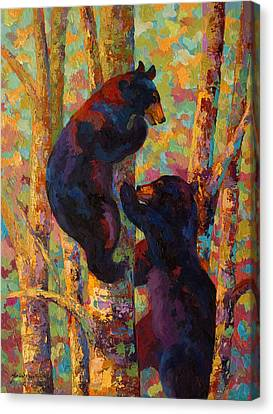 Two High - Black Bear Cubs Canvas Print by Marion Rose