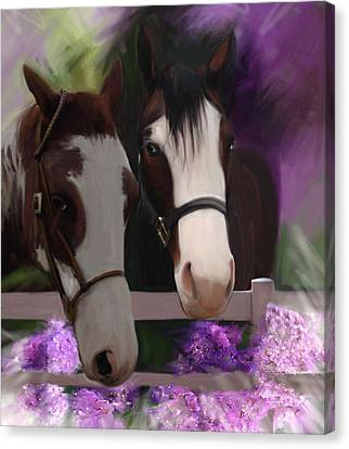 Two Horses And Purple Flowers Canvas Print