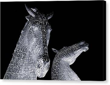 Two Horses Canvas Print by Stephen Taylor