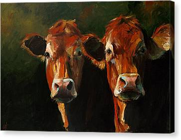 Bovine Canvas Print - Two Limousins by Cari Humphry