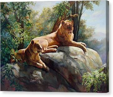 Two Lions - Forever And Always Together Canvas Print by Svitozar Nenyuk