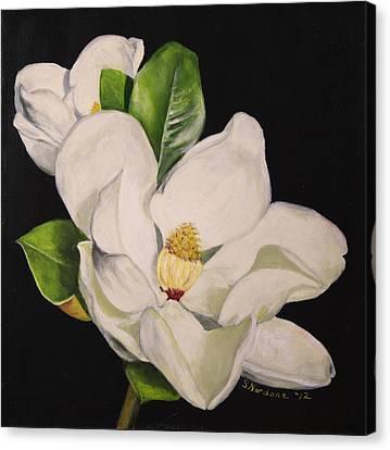 Two Magnolias Canvas Print by Sandra Nardone