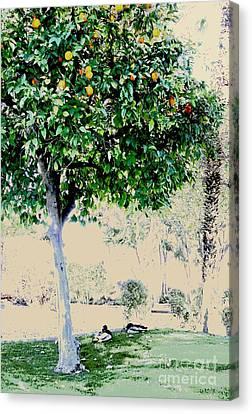 Two Mallards Under The Orange Tree Canvas Print by Natalie Ortiz