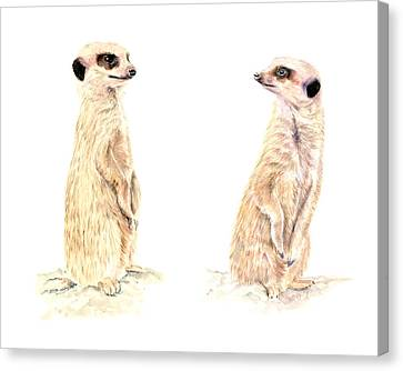 Two Meerkats Canvas Print by Elizabeth Lock