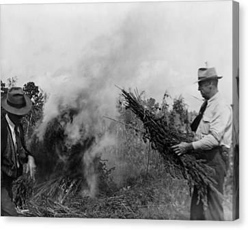 Two Men Burning Marijuana In Field Canvas Print by Everett