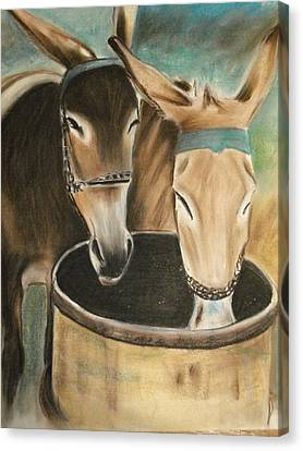 Two Of A Kind Canvas Print by Scott Easom