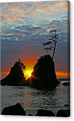 Two Of The Three Graces In Garibaldi Oregon Canvas Print by Ulrich Burkhalter