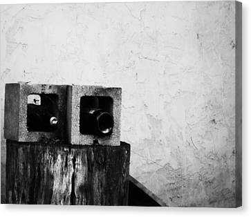 Canvas Print featuring the photograph Two On The Stump by Jeff DOttavio
