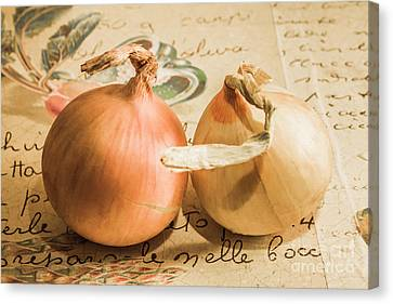 Two Onions On Recipe Paper Canvas Print by Jorgo Photography - Wall Art Gallery
