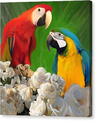 Two Parrots And White Roses Canvas Print