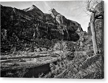 Two Peaks - Bw Canvas Print by Christopher Holmes