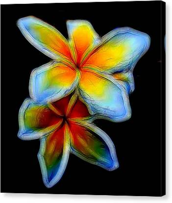 Two Plumerias Canvas Print