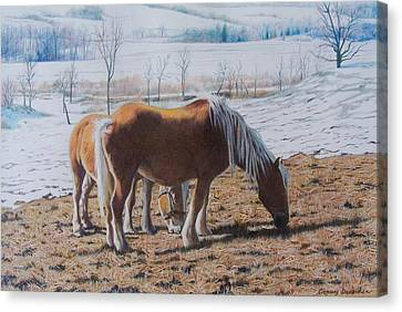 Canvas Print featuring the mixed media Two Ponies In The Snow by Constance Drescher