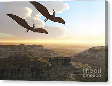 Two Pterodactyl Flying Dinosaurs Soar Canvas Print by Corey Ford