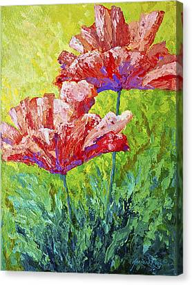 Two Red Poppies Canvas Print by Marion Rose