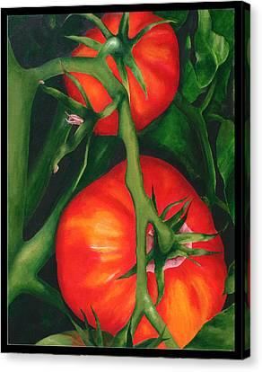 Two Red Tomatoes Canvas Print by Pepe Romero
