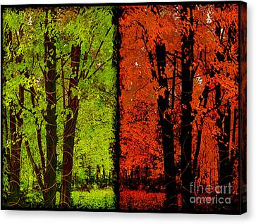 Two Seasons, Spring Green And Autumn Orange Canvas Print by Tina Lavoie