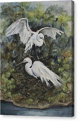 Two Snowy Egrets Canvas Print by Laurie Tietjen