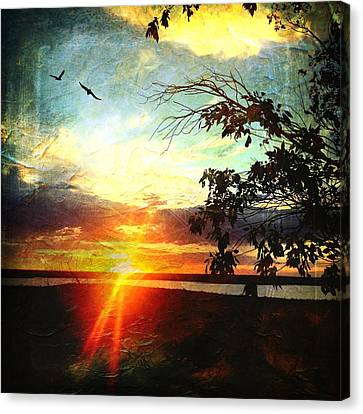 Two Souls Flying Off Into The Sunset  Canvas Print
