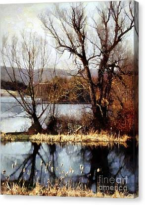 Two Souls Reflect Canvas Print by Janine Riley