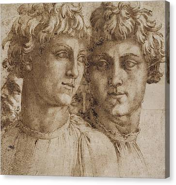 Two Studies Of The Head Of A Youth Canvas Print by Baccio Bandinelli