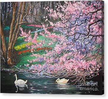 Two Swans Canvas Print by Cynthia Sorensen