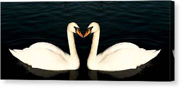 Two Symmetrical White Love Swans Canvas Print