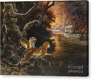 The Tiger Hunt Canvas Print - Two Tigers On The Hunt by Celestial Images