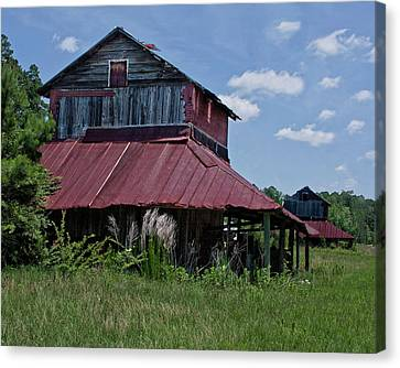 Two Tobacco Barns Canvas Print by Sandra Anderson