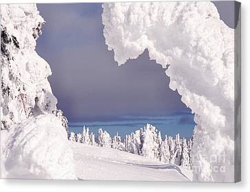 Two Top Mountain Canvas Print by Thomas R Fletcher