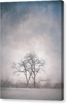 Impression Canvas Print - Two Trees by Scott Norris