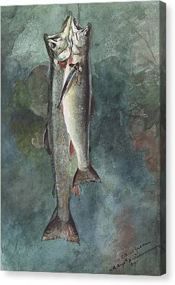 Two Trout Canvas Print by Winslow Homer
