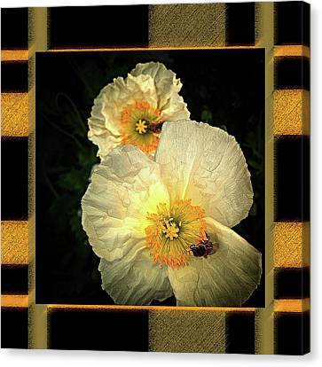 Two Honey Bees Two White Flowers Matted Canvas Print by Shirley Anderson