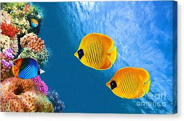 Clown Fish Canvas Print - Two Yellow Reef Fish  by Garland Johnson
