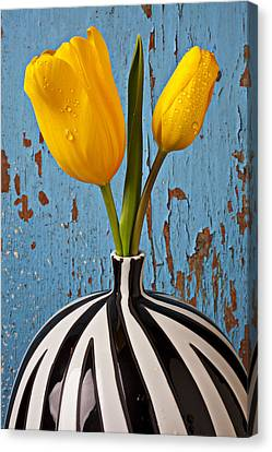 Graphic Canvas Print - Two Yellow Tulips by Garry Gay