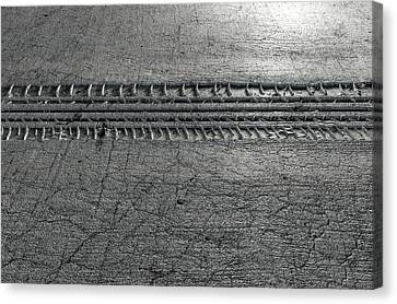 Tyre Track In The Ground Canvas Print by Allan Swart