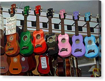 Ukeleles For Sale Canvas Print by Suzanne Gaff