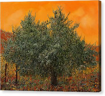 Warm Summer Canvas Print - Un Altro Ulivo Al Tramonto by Guido Borelli