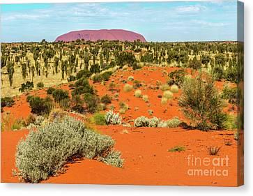 Canvas Print featuring the photograph Uluru 01 by Werner Padarin