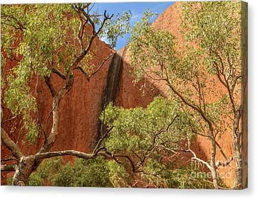 Canvas Print featuring the photograph Uluru 02 by Werner Padarin