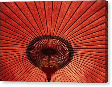 Umbrella Canvas Print by Steve Williams