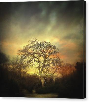 Winter Light Canvas Print - Un Dernier Crepuscule by Taylan Apukovska