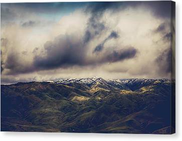 Undeniable Canvas Print by Laurie Search