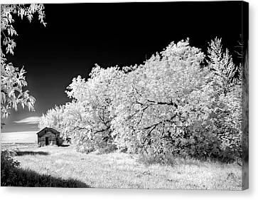 Canvas Print featuring the photograph Under A Dark Sky by Dan Jurak
