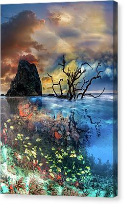 Under And Over The Reef Canvas Print by Debra and Dave Vanderlaan