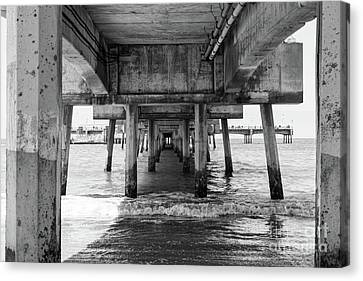 Under Belmont Veterans Memorial Pier Canvas Print