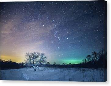 Under Orion Canvas Print by Michael Kosachyov