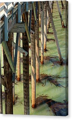 Canvas Print featuring the photograph Under San Simeon Pier by Art Block Collections