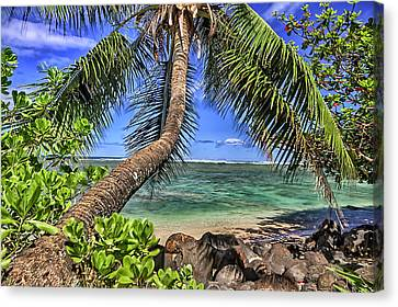 Under The Coconut Tree Canvas Print