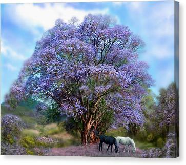 Under The Jacaranda Canvas Print